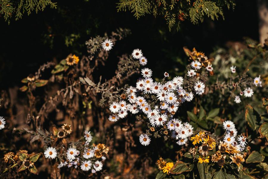 detal kwiaty slub
